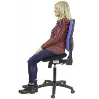Posture Perch Adjustable Sit Stand Chair with Back Support