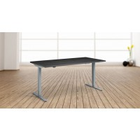 Eco Height Adjustable Desk Silver Frame with 1600x800mm Carbon Marine Wood Top